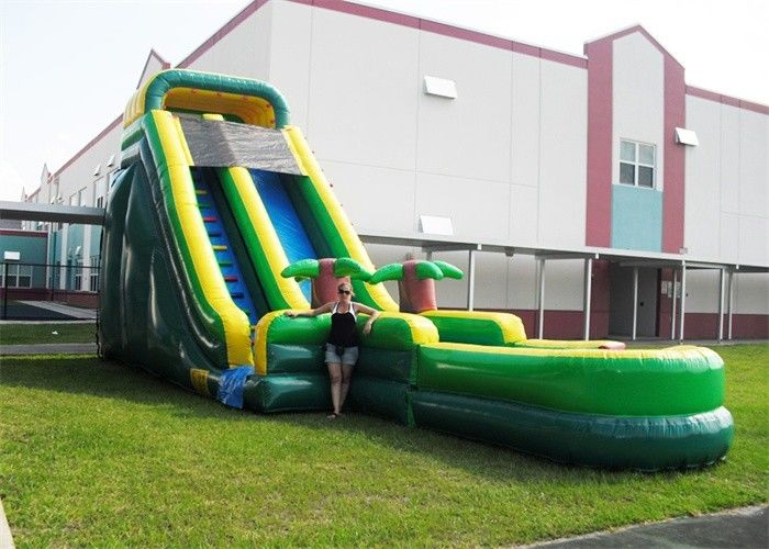 Durable Plato PVC Tarpaulin Inflatable Water Slides , Inflatable Garden Water Slide
